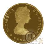 can-100dollars-bighorn-01-1.jpg